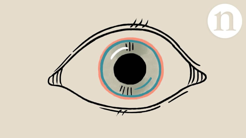 Repairing-the-cornea-let-there-be-sight